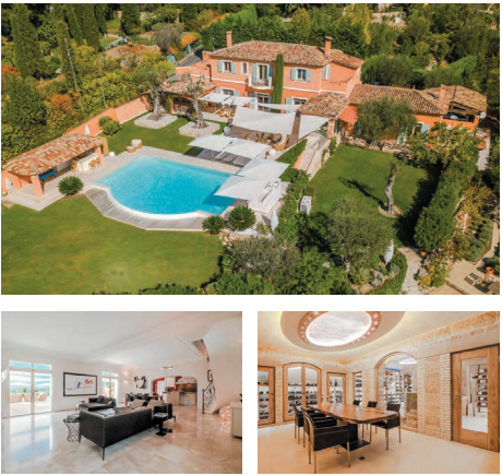 Luxury properties for sale south france